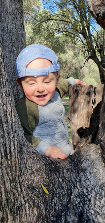 Smiling Little Baby Boy Climbing On Old Olive Tree, Parc Du Cap Martin In Roquebrune-Cap-Martin, France, Europe, Close Up Portrait 스톡 콘텐츠