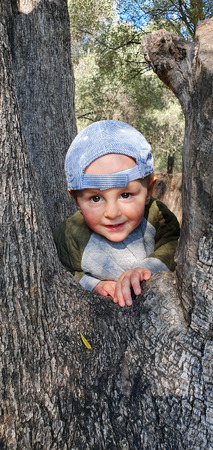 Cute Little Baby Boy Climbing On Old Olive Tree, Parc Du Cap Martin In Roquebrune-Cap-Martin, France, Europe, Close Up Portrait