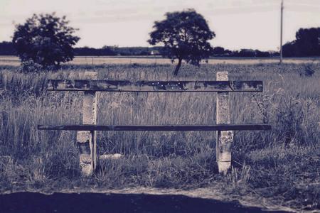 lonley: Lonley bench.