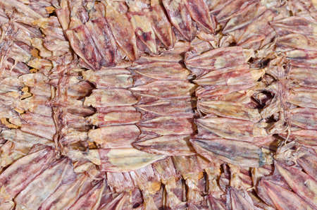 preservation: Dried squid, dried sea food preservation