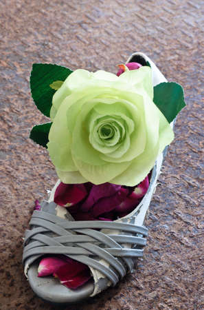 Still life of grungy lady shoe  with big green rose and red rose petals Stock Photo