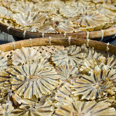 Sundried Stingray fish in bamboo basket Stock Photo - 28217662