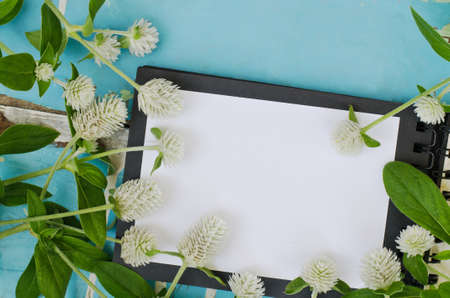 open spaces: White Globe Amaranth flowers on open book Stock Photo