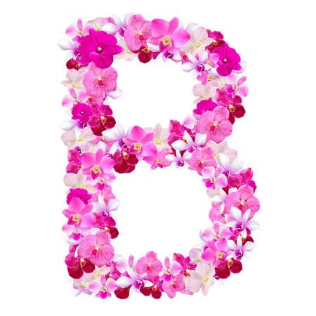 lettre alphabet: Lettre B de fleurs d'orchid�e isol� sur blanc avec le chemin de travail