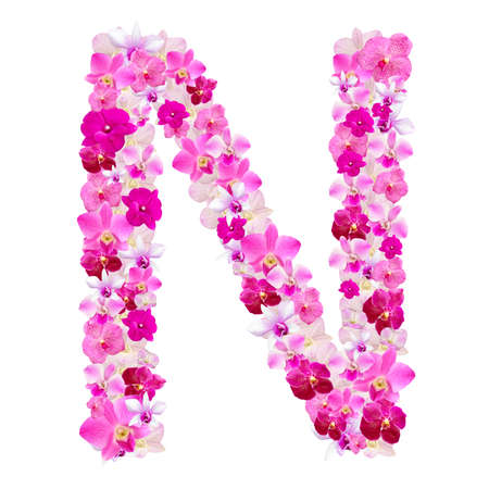 Letter N from orchid flowers isolated on white with working path