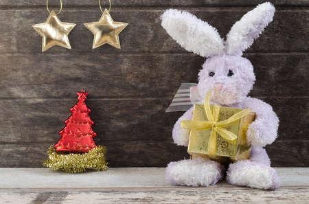 lovely rabbit doll holding present box