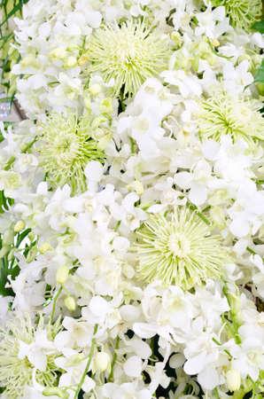 wedding backdrop: Wedding backdrop with white flower decoration