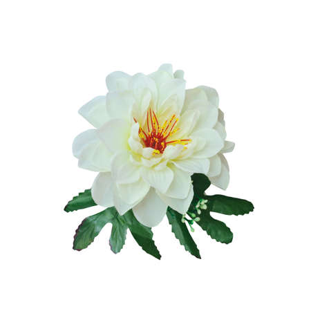 White beautiful artificial flower isolate on white background with working path Stock Photo