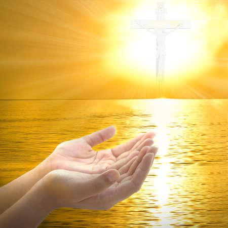 손바닥으로 인간의 손에기도 하 고 하나님에 게 감사합니다.