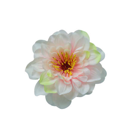 Beautiful pink and white fabric peony flower isolated on white with working path Stock Photo