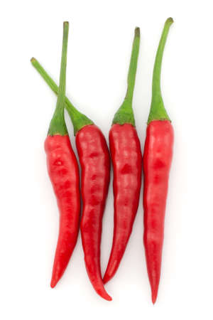 Hot chili pepper or small chili padi isolated on white background Stock Photo