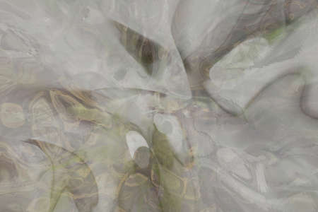 Abstract blur dreamy fluid effects, artistic for graphic design, catalog or texture & background. 免版税图像 - 145536095