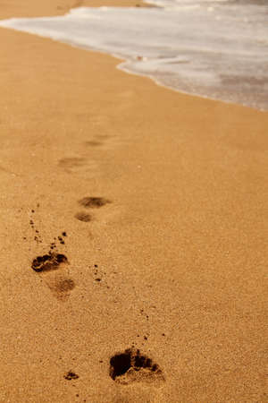 Footprints in the sand Maui Stock Photo