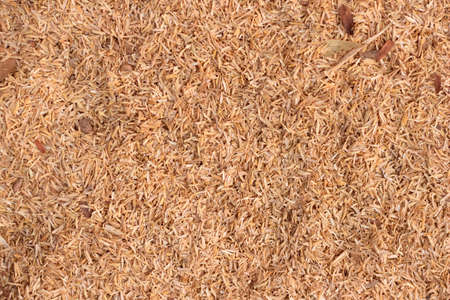 Rice hulls  texture background