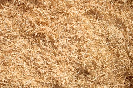 Wood sawdust background closeup. Sawdust floor texture 免版税图像
