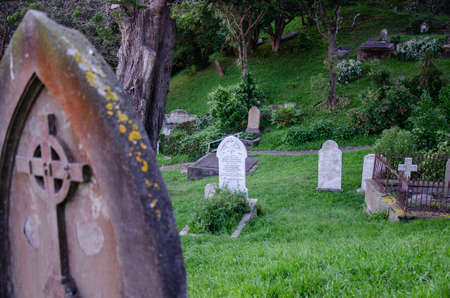 WELLINGTON, NEW ZEALAND - April 4, 2020: Victoria university cemetary with tombstones in tall green grass