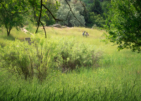 Boise, Idaho, USA - May 23 2018: Men hiking in the Boise foothills
