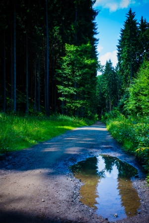 country path photo