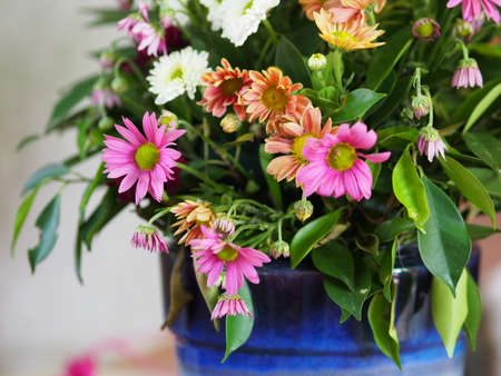 mixed flowers photo