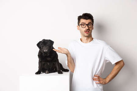Confused man seeing something strange, staring at camera puzzled, standing near cute black pug pet against white background