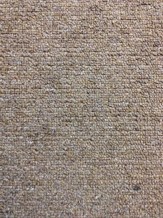 clothing: Carpet Floor