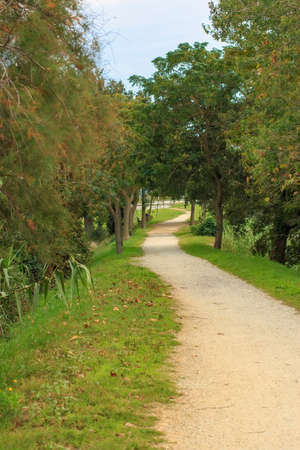 ambient: Deserted gravel hiking path among ambient greenery Stock Photo