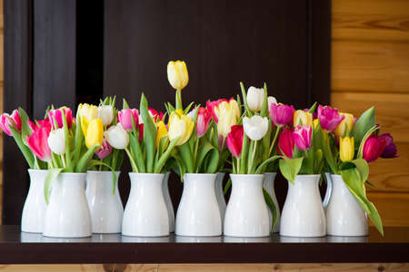 odorous: Many tulips in bowls Stock Photo