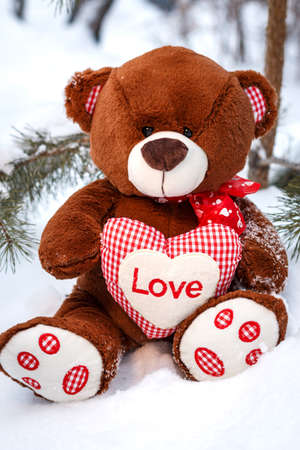valentine s day teddy bear: Fluffy cute soft toy teddy bear with heart love in snow closeup Stock Photo