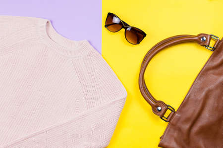 Autumn female clothing and accessories- pink sweater, leather handbag, sunglasses.