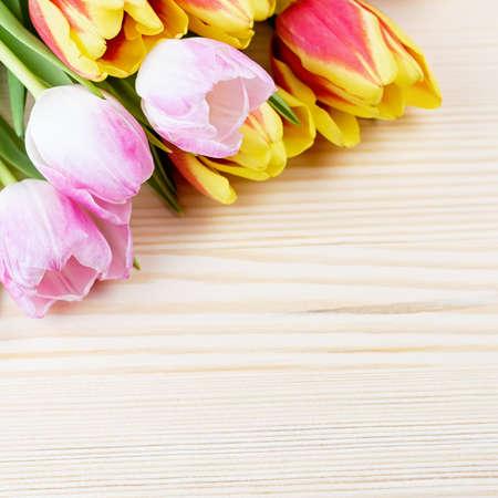 Tulipanes rojos y rosados en primer plano de fondo de madera