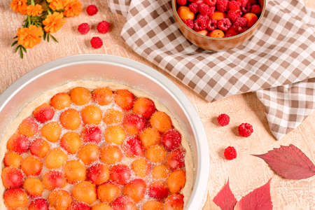 Homemade delicious sweet apricot pie served with raspberries, top view Stockfoto