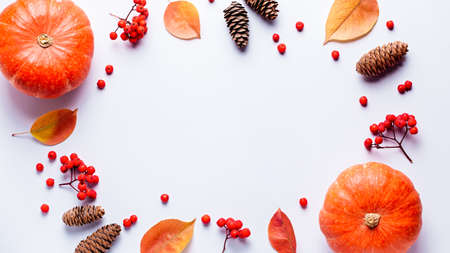 Autumn composition with leaves, pumpkins, rowan berries on grey background, top view. Autumn, fall, halloween, thanksgiving day concept. Flat lay, copy space Standard-Bild