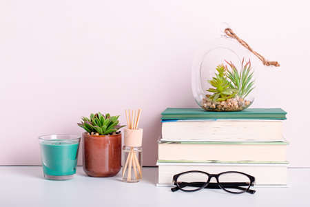 Bookshelf with multicolor books, house plants succulents and black board frame for text. Background for Teachers Day, World Book Day. Still life with stack of colorful books, chalkboard