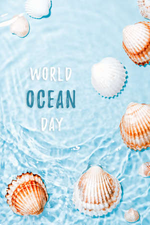 Beautiful crystal clear water swirling, sea shells underwater. World ocean day card with text, shells and blue water. Global environmental problem concept