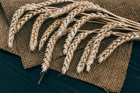 Spikelets of ripe wheat on wooden background. Healthy food