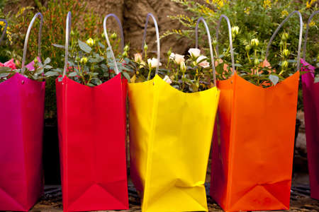 flowers in bags photo