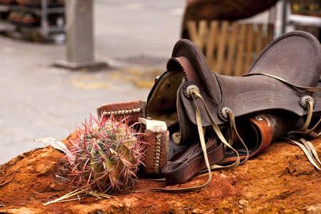 Saddle and cactus Stock Photo - 9356454
