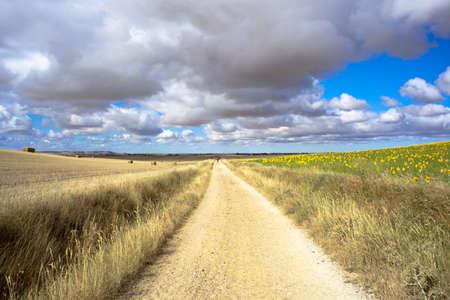 Carretera en las zonas rurales
