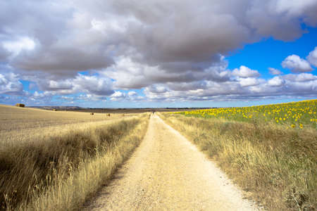 Road auf dem Lande