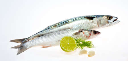 Mullet and mackerel with garlic and lemon photo