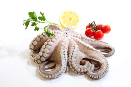 octopus: Octopus citroen en tomaten geïsoleerd op een witte achtergrond