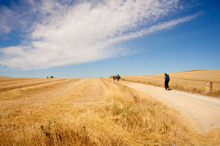 plowed field: Pilgrim on the road to Santiago