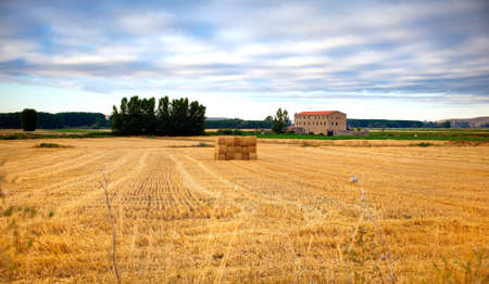 Bales of hay in spanish countryside photo