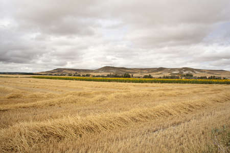 Spanish countryside, Way of St. James photo