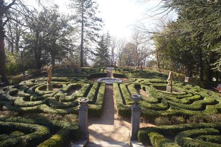 Maze of hedges, Villa Rivoltella in Trieste