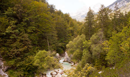 View of Slovenian Soca river in the summer Stock Photo - 13681983