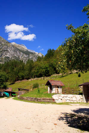 View of Julian Alps in the Slovenian countryside photo