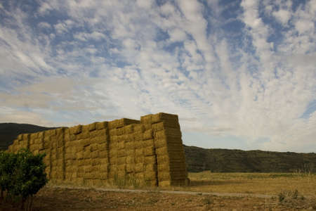 Bales of hay in the spanish countryside in the summer Stock Photo - 13909849