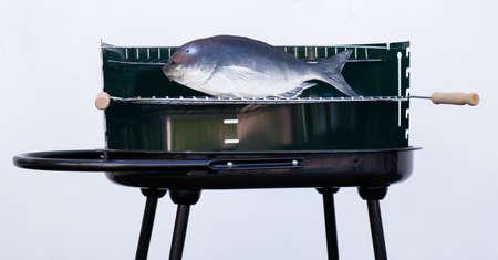 fish toy: Barbeque falso con il pesce giocattolo di plastica