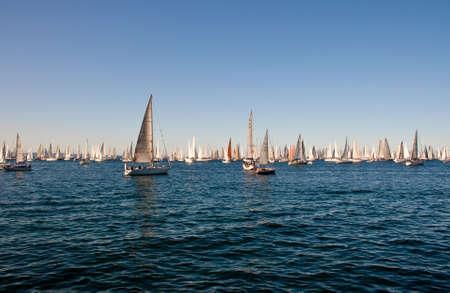 Trieste Barcolana,  2009 - The Trieste regatta  - Italy - http://www.barcolana.it/ Stock Photo - 13916800